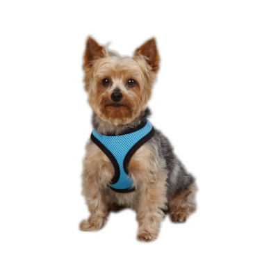 Casual Canine Mesh Pet Harness