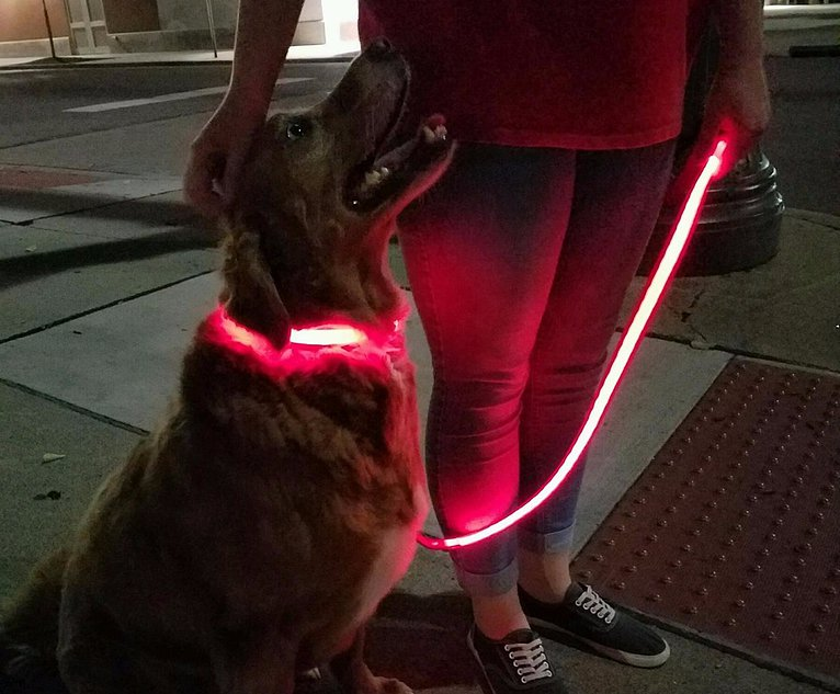 Illuma Collar Rechargeable Dog Collars Leashes
