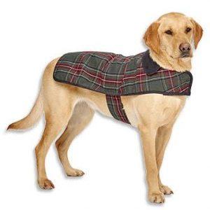Pendleton Grey Stewart Classic Dog Coat