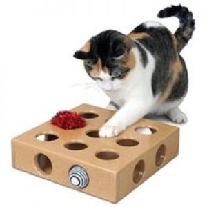 SmartCat Peek and Play Box Cat Toy
