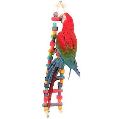 A&E Cage Company Happy Beaks Bird Ladder