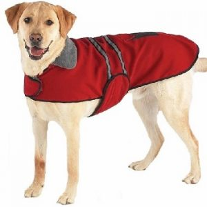 Casual Canine Reflective Dog Jackets