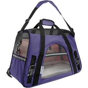 Paws & Pals Small Pet Carrier