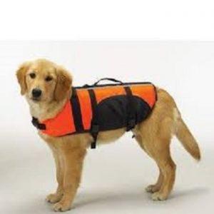 Guardian Gear Aquatic Dog Pet Preserver