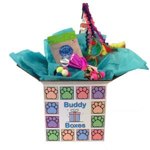 Cat Buddy Box