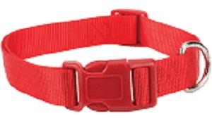 Casual Canine Red Dog Collar