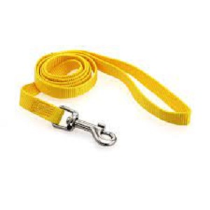 Casual Canine Yellow Nylon Leash