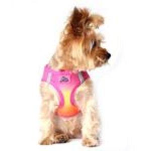 Doggie Design American River