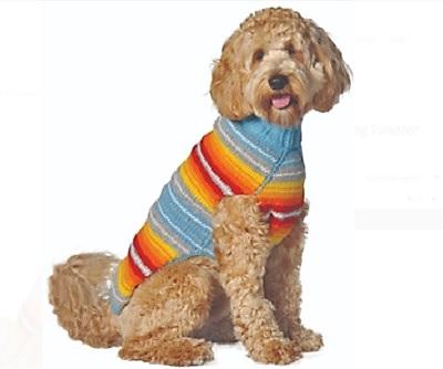 Chilly Dog Serape